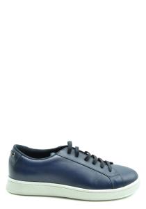 Sneakers Car Shoe